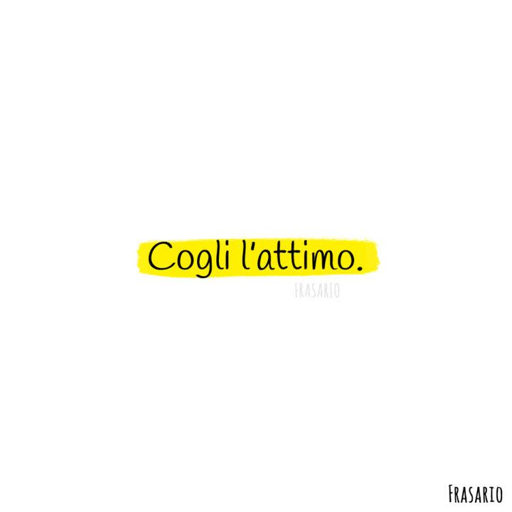 frasi latino vita cogli attimo